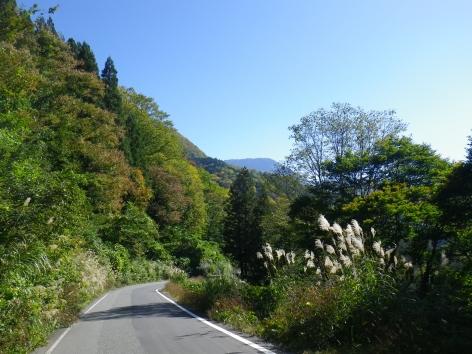 東秋山林道