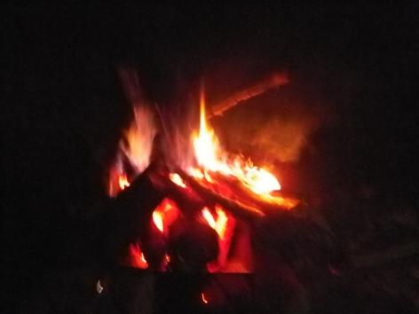 2014秋 のよさの里 焚火