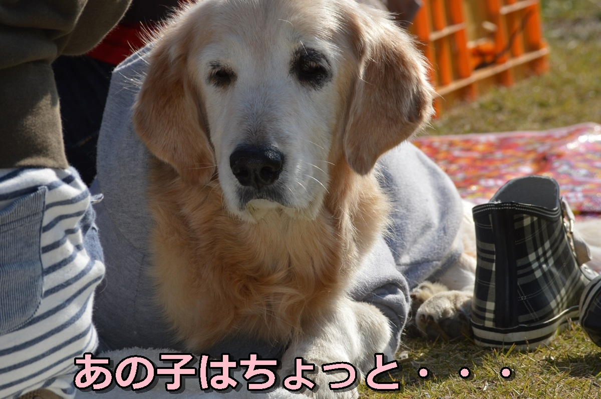 DSC_0671-128.jpg