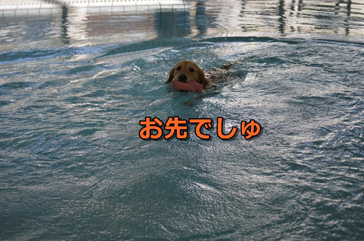 DSC_1216-002.jpg