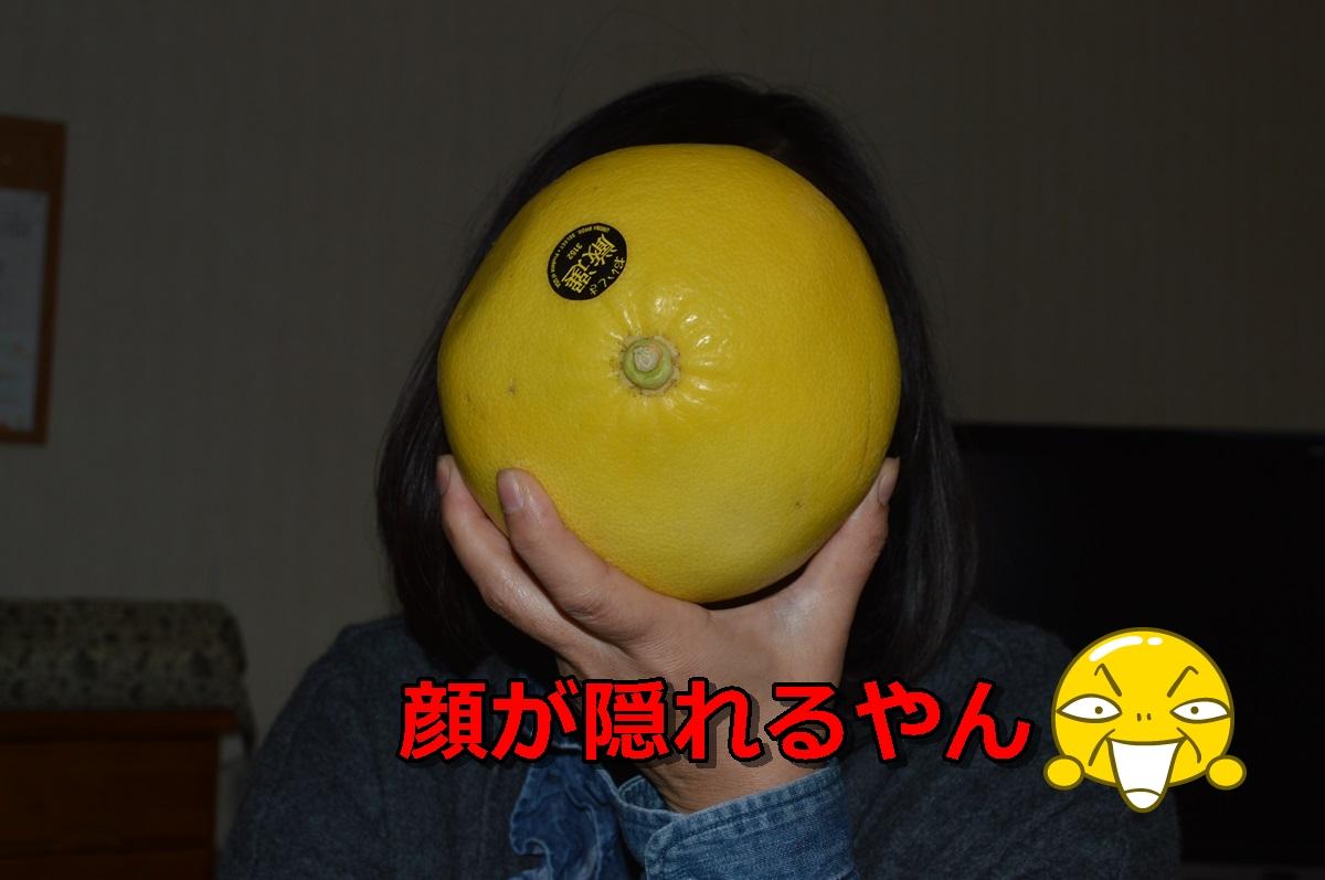 DSC_1754-037_20131227205852ed8.jpg