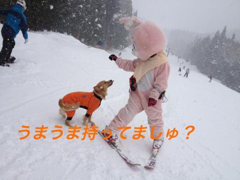 IMG_3967s_20131228200228abb.jpg