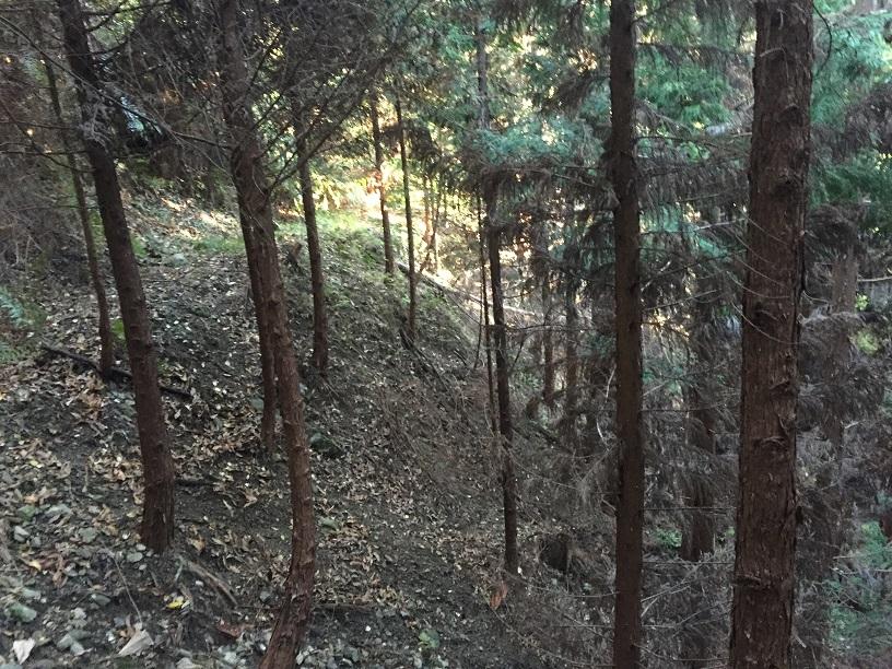hunting3_2.jpg
