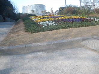 暖かな日花の美術館へ