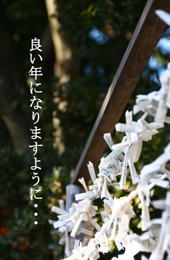IMG_2599 おみくじ
