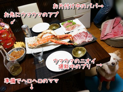 20131231_4.jpg