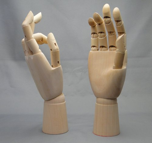 Model of the hand_01