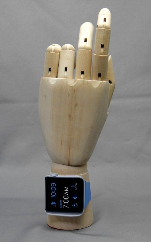 Model of the hand_b03