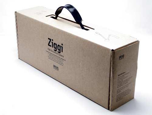 Ziggi_01.jpg