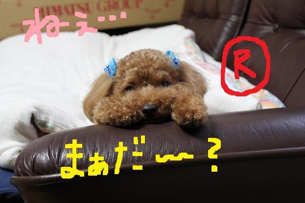 20120730011945aec.jpg