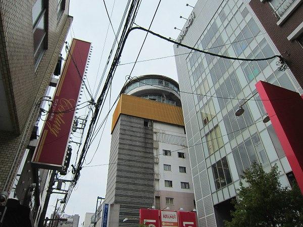 きくま+すずめ@広島市