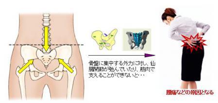 骨盤の安定性が大事な理由