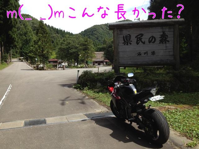 IMG_0329.jpg