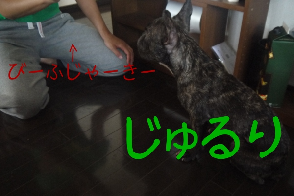 20120923_004.jpg