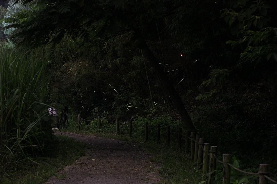 shuku-IMG_3484.jpg