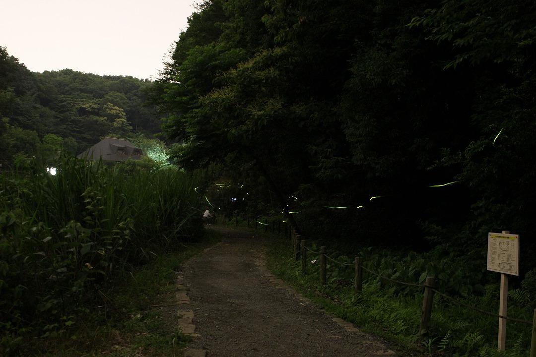shuku-IMG_3497.jpg