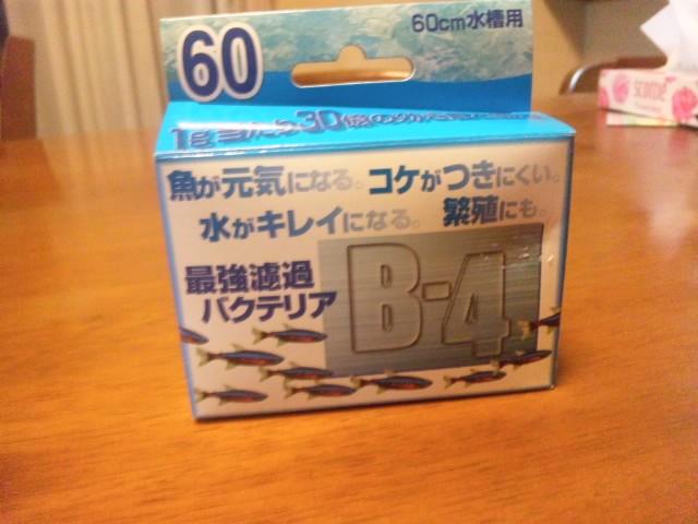 SH3I0019.jpg