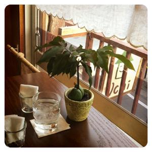 ショップ&カフェ「Uchi」の内装
