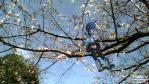 2013-03-21-134459.jpg