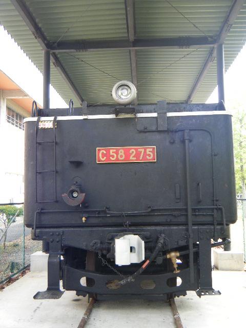 DSCF1454.jpg