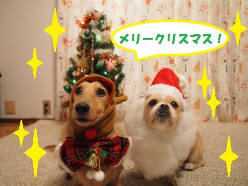 003_convert_20131225212447.jpg