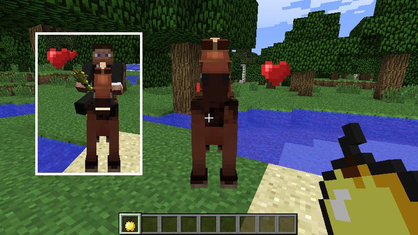 horse a manual-3