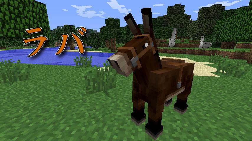 horse a manual-7