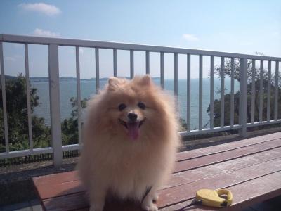 浜名湖で休憩