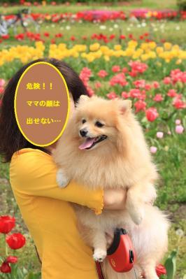 IMG_45970.jpg