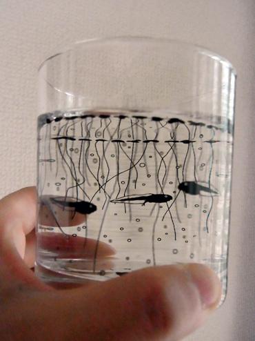 グラスにお水と入れると