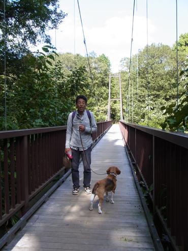 つり橋を渡る