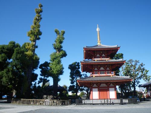 今日のお寺