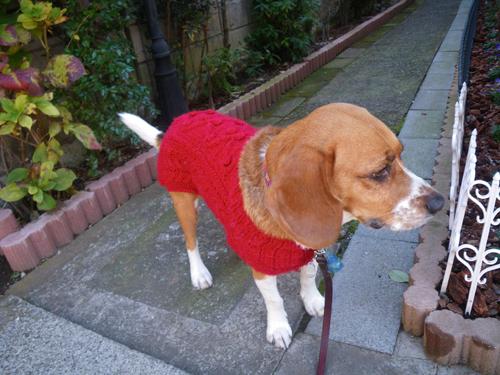 赤いセーターその2