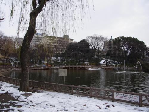 見次公園の池
