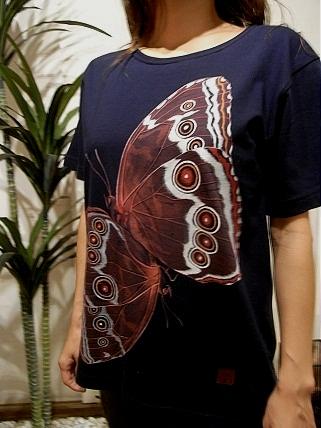 モルフォチョウの求愛 Tシャツ 2012629