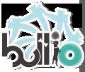bnr200_100_1.png
