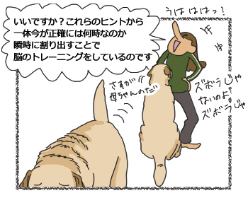 羊の国のラブラドール絵日記シニア!!ズボラじゃないの4コマ漫画4