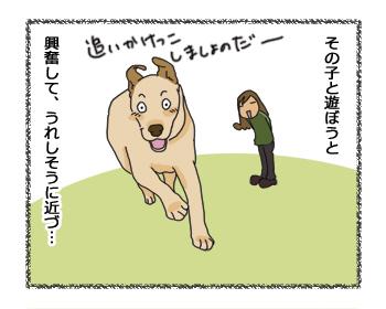 羊の国のラブラドール絵日記シニア!!犬4コマ漫画2