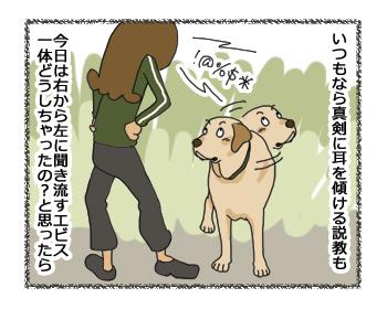 羊の国のラブラドール絵日記シニア!! 4コマ漫画「時間差反省」3
