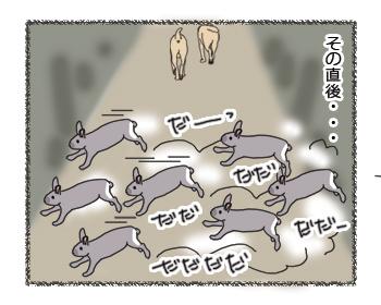 羊の国のラブラドール絵日記シニア!!チームワーク3