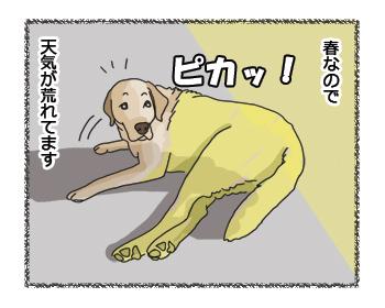 羊の国のラブラドール絵日記シニア!! なんでもいい4コマ41