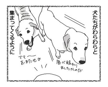 羊の国のラブラドール絵日記シニア!!4コマ漫画「見破ったり!」2