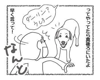 羊の国のラブラドール絵日記シニア!!4コマ漫画「リアル志村」4B