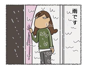 羊の国のラブラドール絵日記シニア!!お散歩貯金1