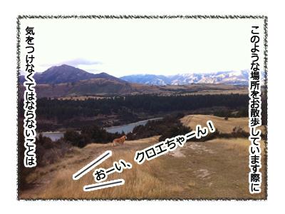 羊の国のラブラドール絵日記シニア!!お散歩アウトドア心得1