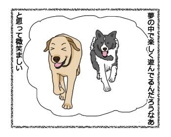 羊の国のラブラドール絵日記シニア!! 4コマ漫画微笑ましい2