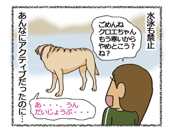 羊の国のラブラドール絵日記、ごめんねクロエちゃん3