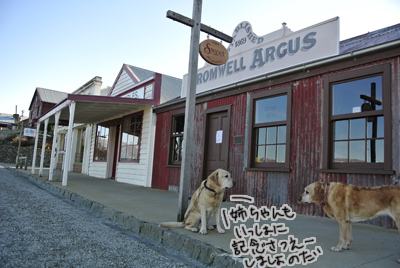 羊の国のラブラドール絵日記、エビスの観光案内5