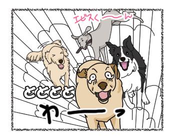 羊の国のラブラドール絵日記シニア!!4コマ「週末クロエビス」2