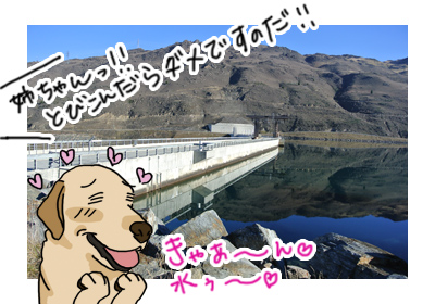 羊の国のラブラドール絵日記シニア、エビスと旅するニュージーランド「Clydeダム」